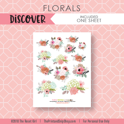 Florals >> Discover Collection